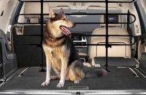 best car pets barriers