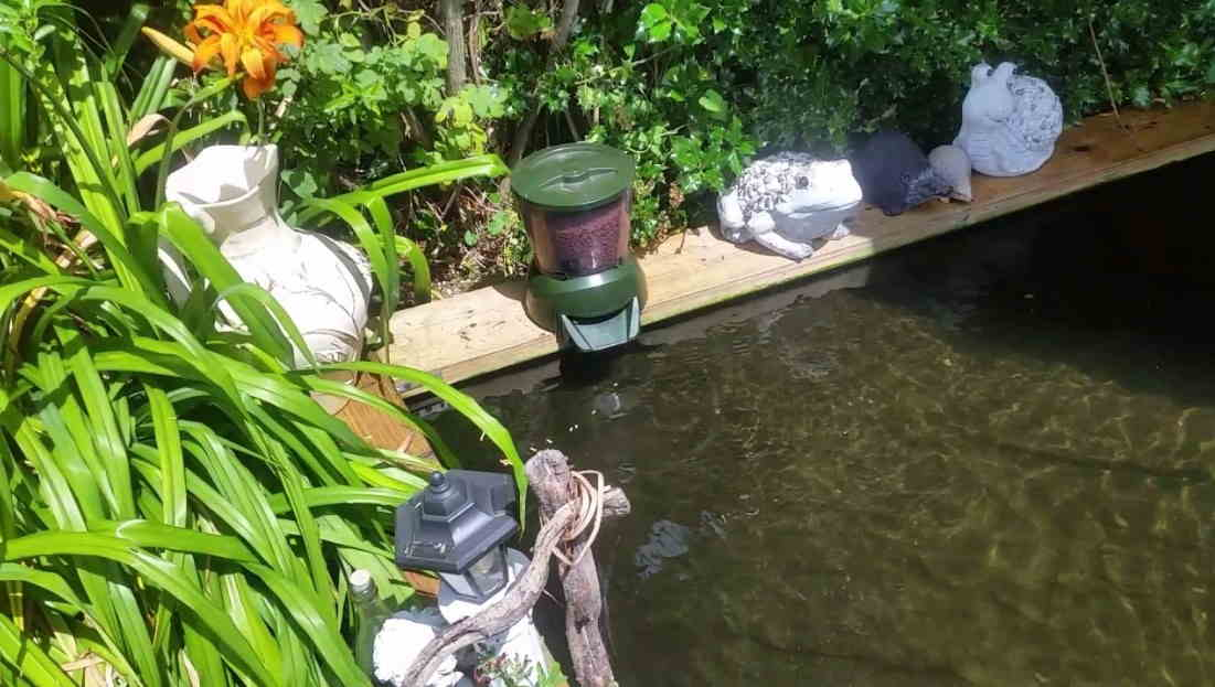 Automatic Pond Fish Feeders