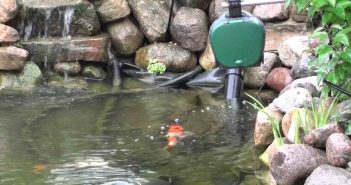 Best Automatic Pond Fish Feeders Reviews