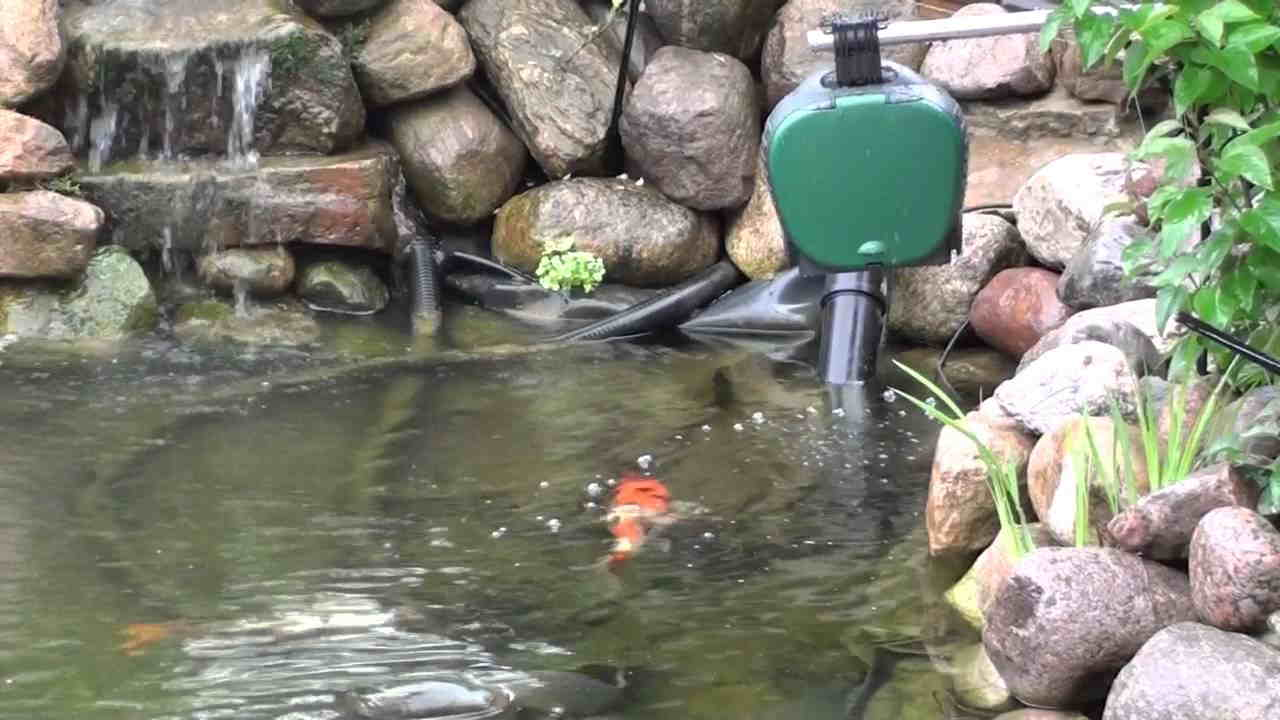 powered solar of picture id feeder pond outdoor fish large