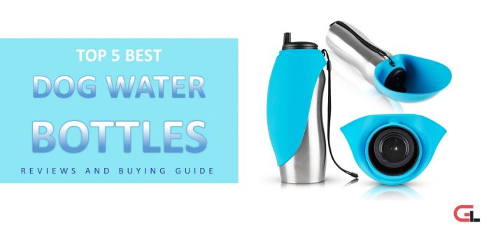 TOP 5 Best Dog Water Bottles: Reviews and Buying Guide 2018