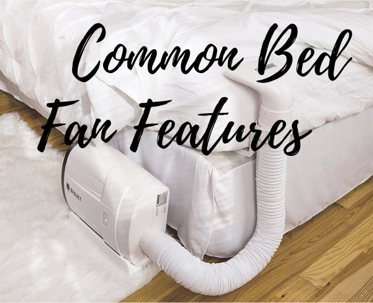 Common Bed Fan Features