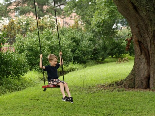 Are Tree Swings Safe