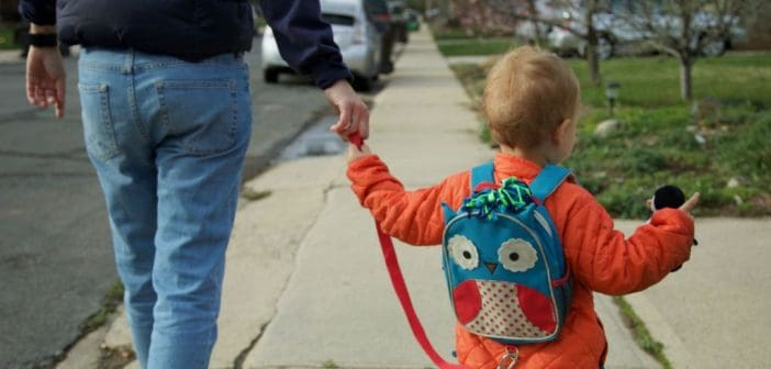 TOP 10 Best Child Wrist Leash 2020 Reviews and Buying Guide